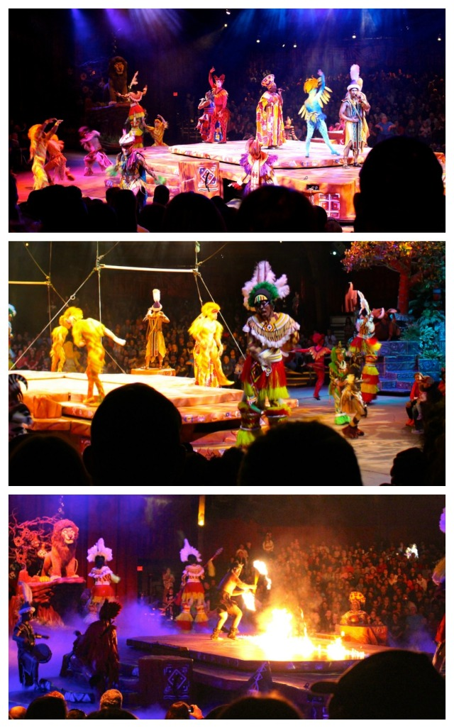 from-asia-to-africa-and-back-again-animal-kingdom-lion-king-show